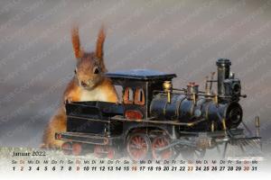 Eichhörnchen Kalender 2022