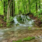 Sinterassen Weißenbrunn am Wald